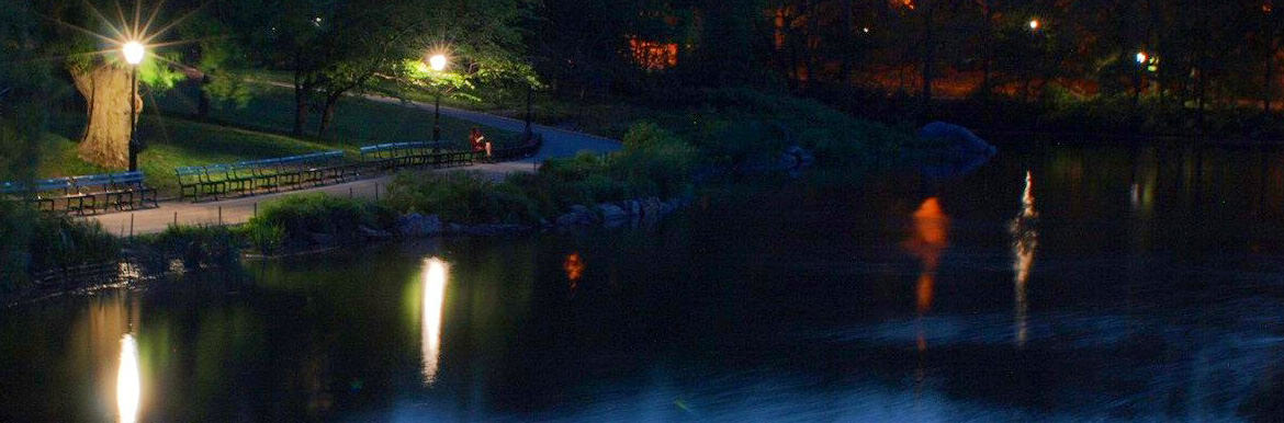 Pond in the park at night
